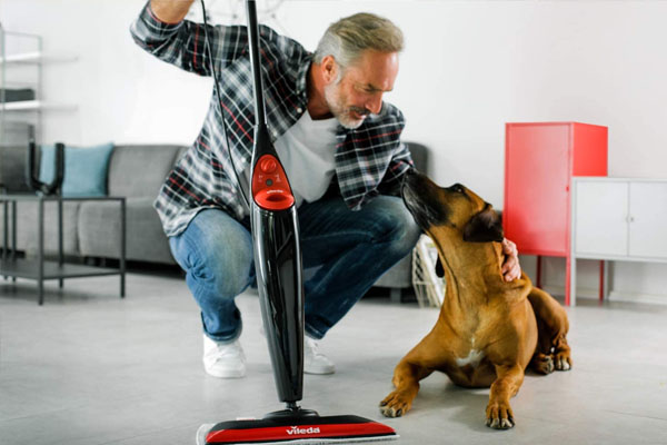Balai vapeur et chien