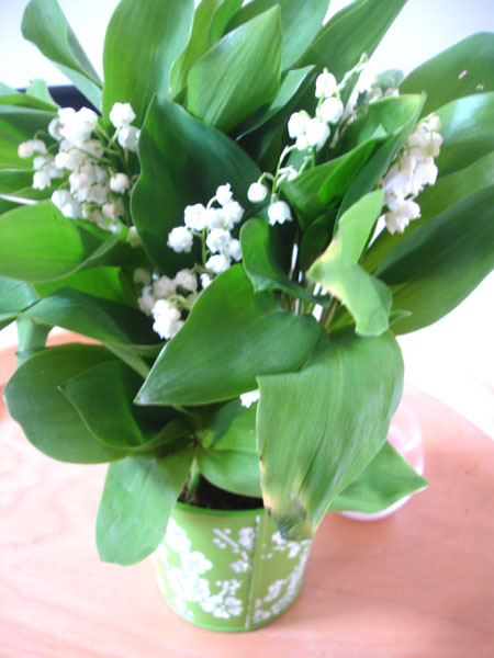 bouquet-muguet-bebloom