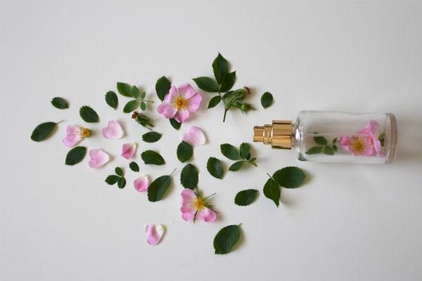 Taux de concentration parfum